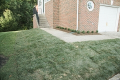 Sod Job After